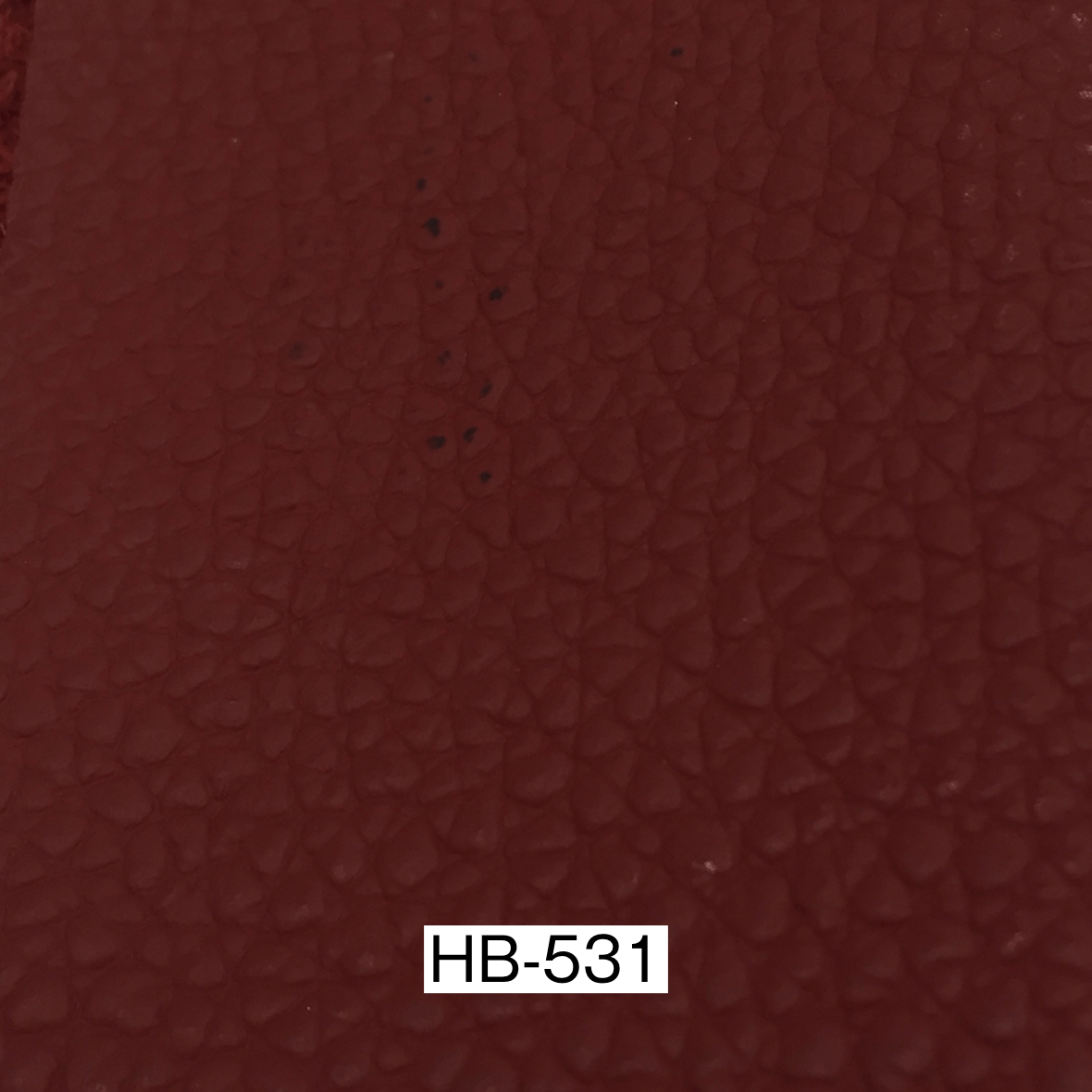 ERベイカー2 HB531革サンプル