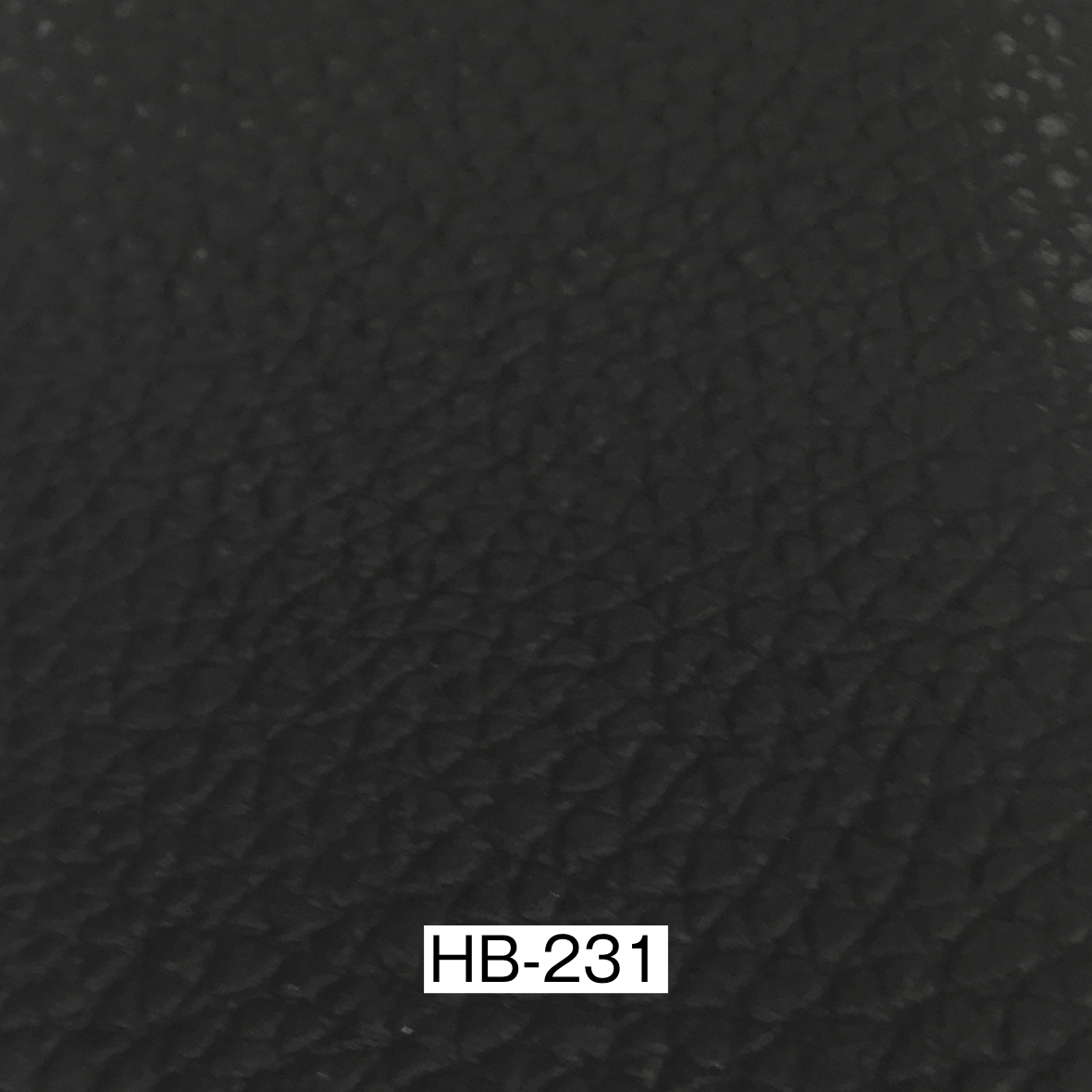 ERベイカー2 HB231革サンプル