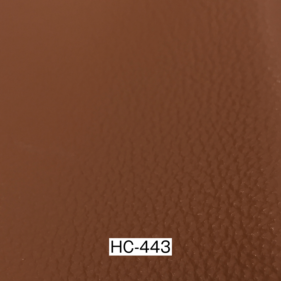 ERベイカー2 HC-443 革サンプル