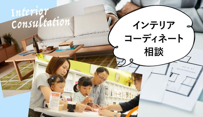 Interior Consultaion