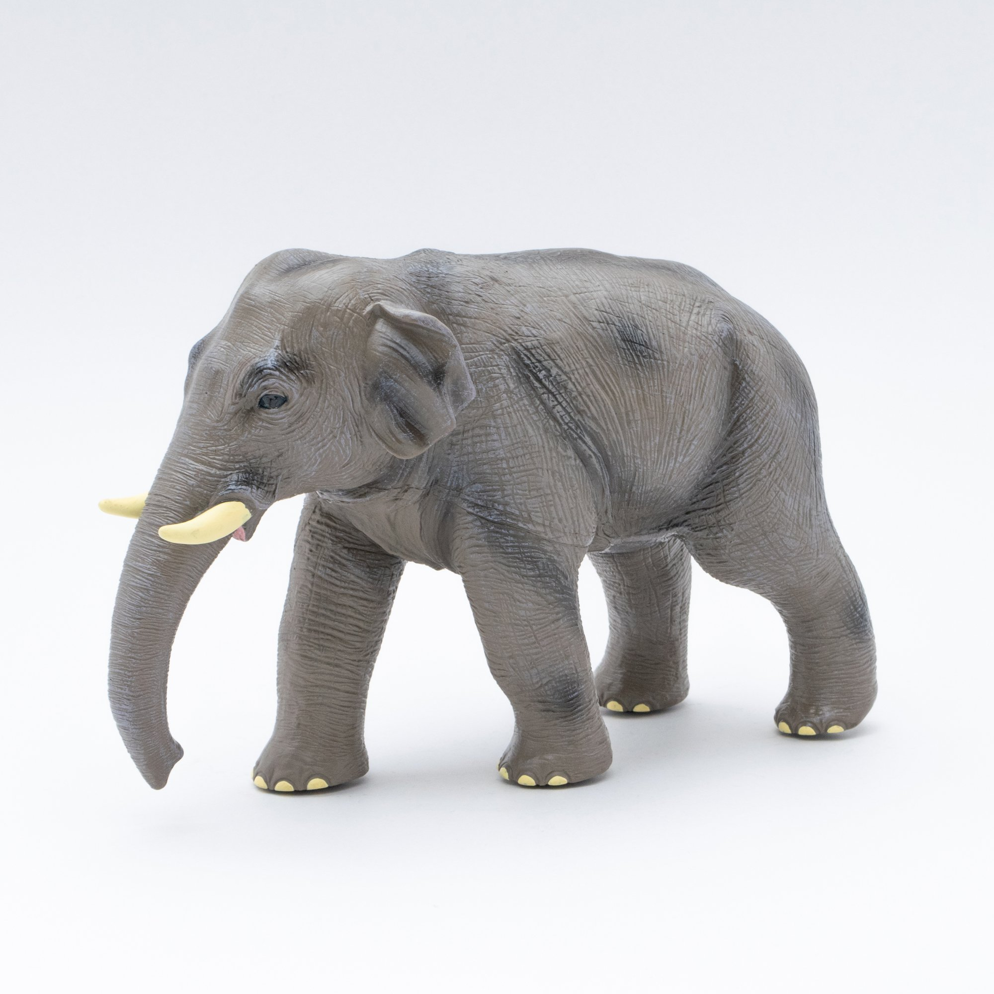 アジアゾウ ビニールモデル