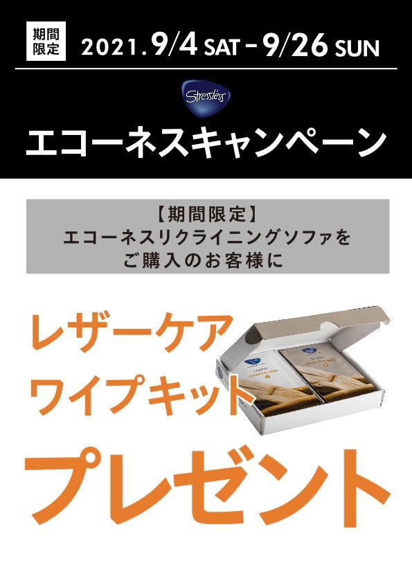 エコーネス キャンペーン